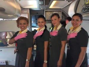 auxiliares de vuelo vivacolombia